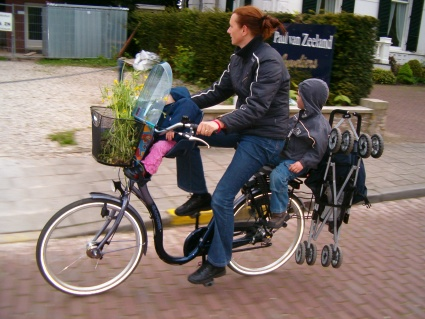 bike with 2 child seats