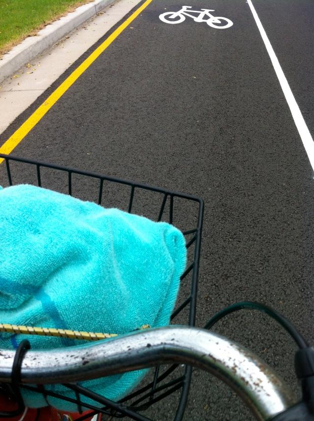 Bike lane Dumaresq