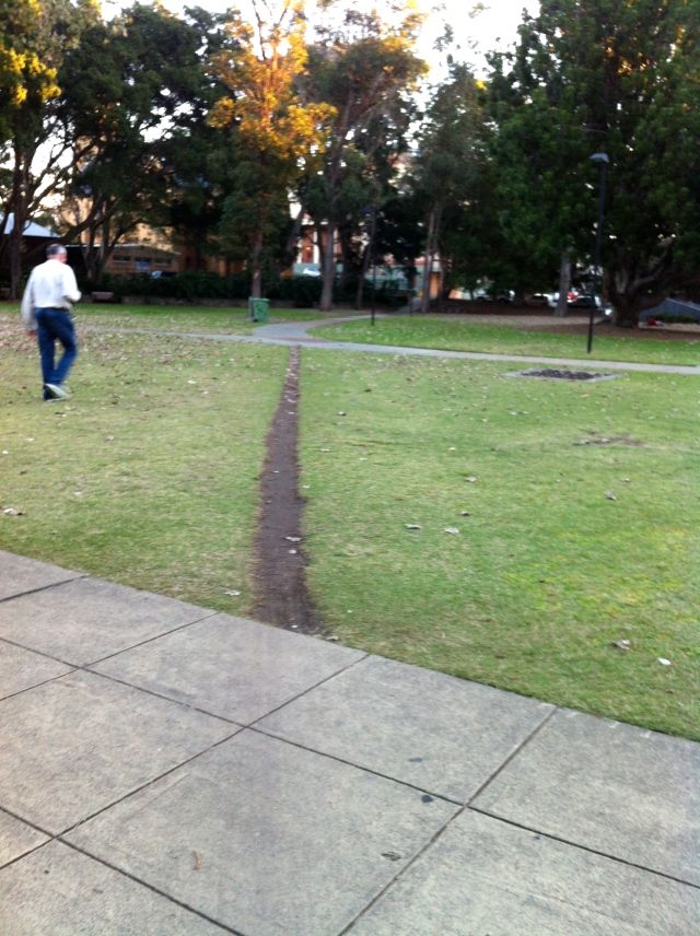 Civic Park paths
